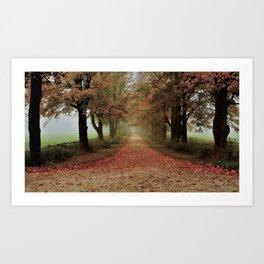 Deep tree pavement Art Print