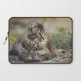 Cat Lying Down Laptop Sleeve