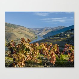 Autumn in the Douro Valley, Portugal Canvas Print