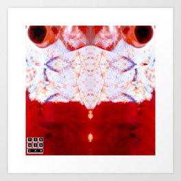 Crystal Shrimp Art Print