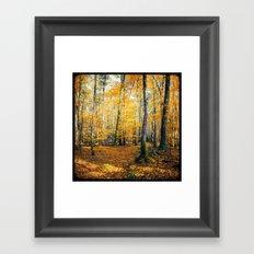 Yellow Trees Framed Art Print