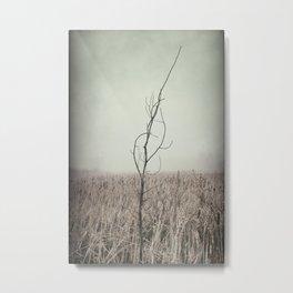 Dead Wood 2 Metal Print