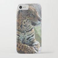 jaguar iPhone & iPod Cases featuring Jaguar by NaturallyJess