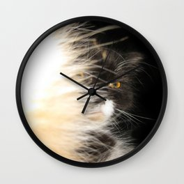 Fluffy Calico Cat Wall Clock