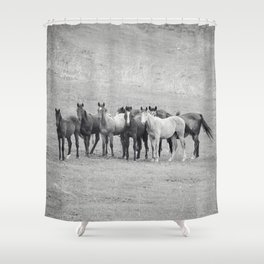 Young Horses Shower Curtain