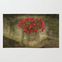 Begonia flowers Rug