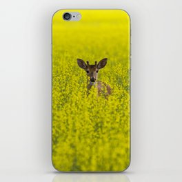 Buck in Canola iPhone Skin