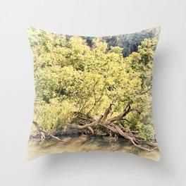 Memories of the river Throw Pillow
