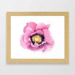 Large Watercolor Poppy Framed Art Print