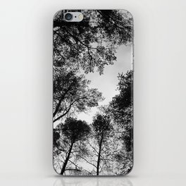 Forest View b/w iPhone Skin