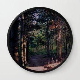 2 Creeks' Trail Wall Clock