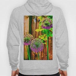 Allium Hoody