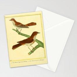 096 gobe mouche (Fr) Stationery Cards