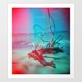 Weathered Lore Art Print