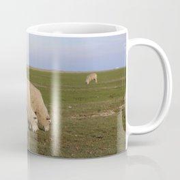 Grasende Schafe auf Nordseeinsel Pellworm / Grazing Sheep on green Field Coffee Mug