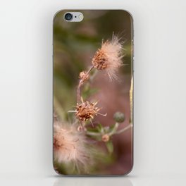 The Mimosa iPhone Skin