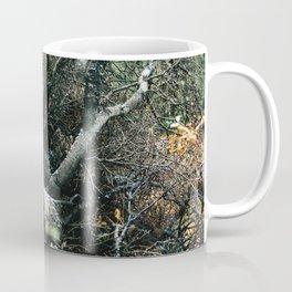 Downed Trees in Fall Season at Denali National Park, Alaska Coffee Mug