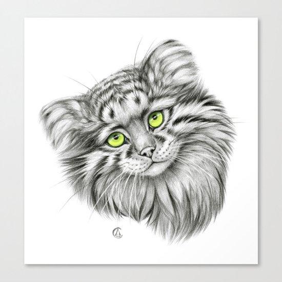 Pallas's Cat green G2012-51 Canvas Print