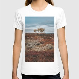 Autumn Birch Tree - Landscape and Nature Photography T-shirt
