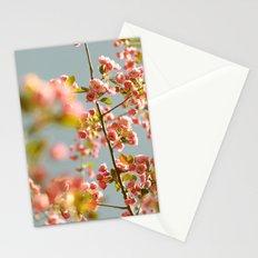 Sherbet Sky Stationery Cards