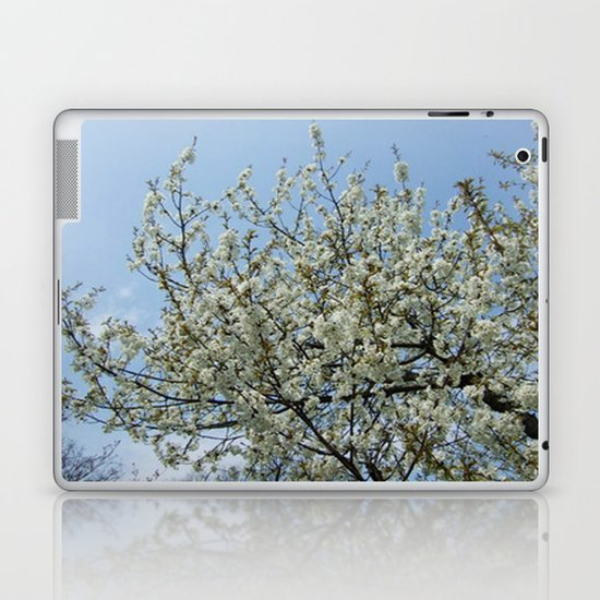 Relax Laptop & iPad Skin