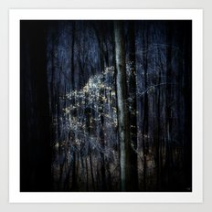 Late Fall In The Forest Art Print