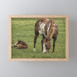 Itchy Leg Framed Mini Art Print