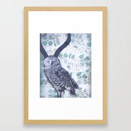 Owlope Framed Art Print
