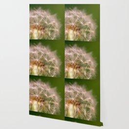Snowglobe - Macro Photograph of Dandelion Wallpaper