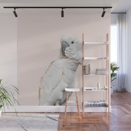 Cockatoo Parrot Photography | Blush Pink | Peach | Happy | Tropical | peek-a-booFun | Paradise Wall Mural
