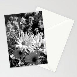 Maximilian Sunflower 3.1 Stationery Cards