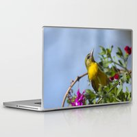 baltimore Laptop & iPad Skins featuring Baltimore Oriole by Christina Rollo
