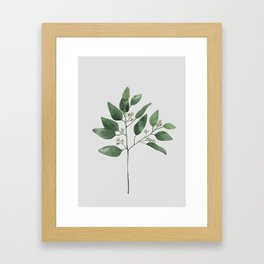Branch 2 Framed Art Print