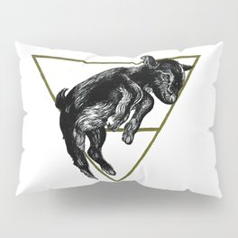 Alazne II Pillow Sham