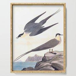 Arctic Yager John James Audubon Vintage Scientific Hand Drawn Illustration Birds Serving Tray