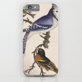 Blue jay, goldfinch, and Baltimore oriole - American ornithology - ALexander Wilson - 1829 iPhone Case