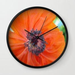 Orange Poppy Wall Clock