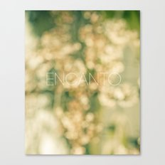 Encanto Canvas Print