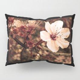 Cherry Blossom Pillow Sham