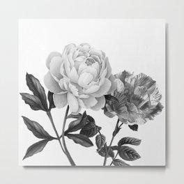 grayscale roses Metal Print