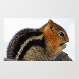 Furry Friend Rug
