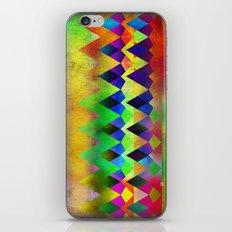Camp Fire iPhone & iPod Skin