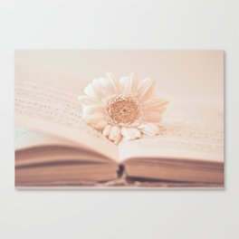 Serenity Of Books Canvas Print