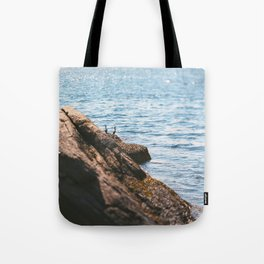 Opposing Views Tote Bag