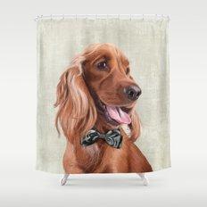 Mr. English Cocker Spaniel Shower Curtain