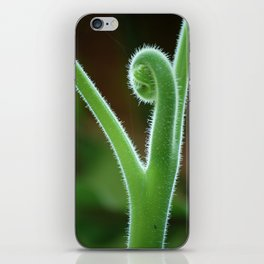 Fern Unraveling #1 iPhone Skin