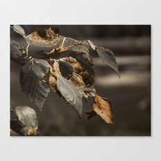 Gold Leaves Canvas Print