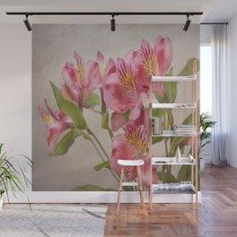 Pink Peruvian Lilies Alstroemeria Wall Mural