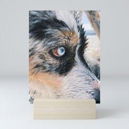 Blue Eyed Boy Mini Art Print