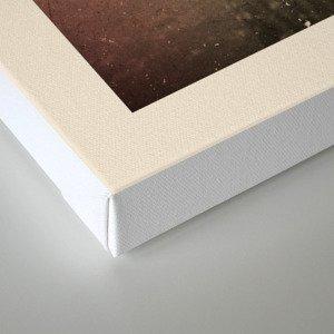 The Disposal Canvas Print